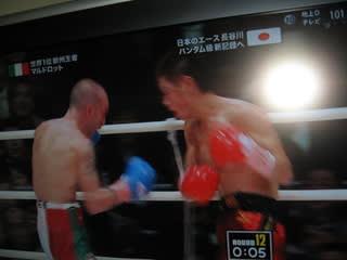 WBCバンタム級世界タイトルマッ...