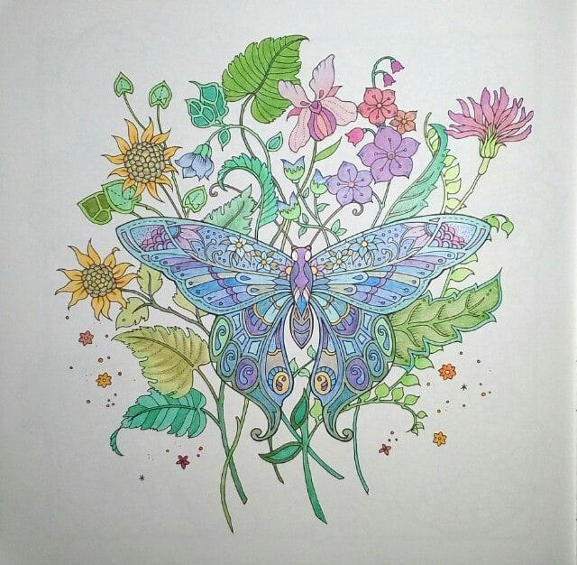 フラワーズ 花を彩るぬりえブック蝶と花ファーバーカステル
