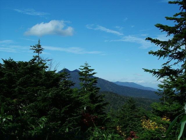 木々の間から燧ケ岳を見る
