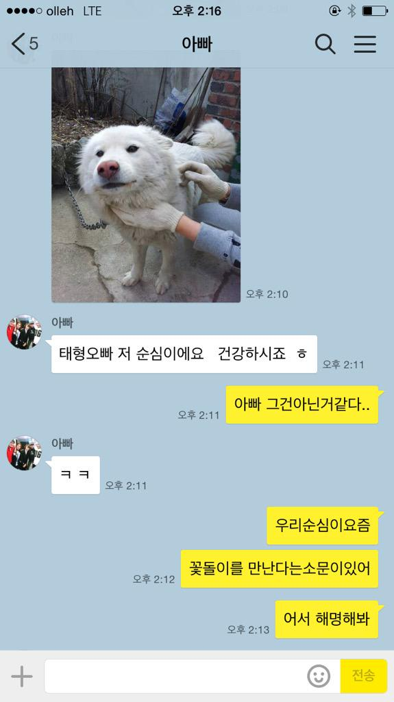 What Dog Breed Is Soonshim