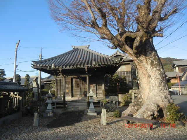 熊野古道(伊勢路)を往く④ - ご...