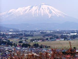 南部片富士