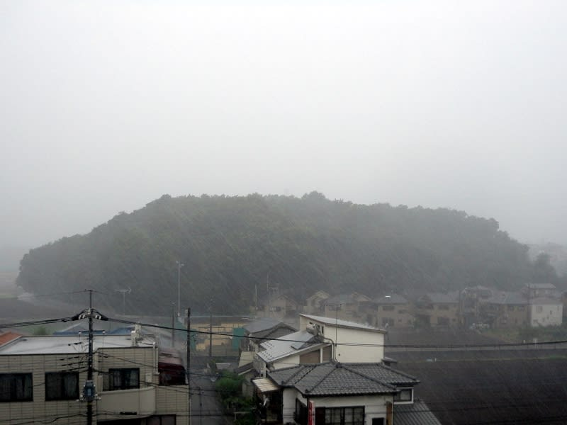 07月19日 大雨根岸台