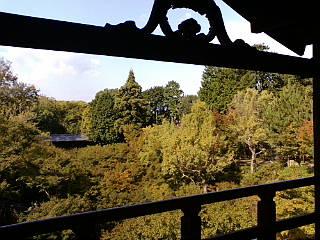 京都、東福寺に来ています。