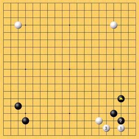 依田紀基九段vs梁宰豪九段戦 - ...
