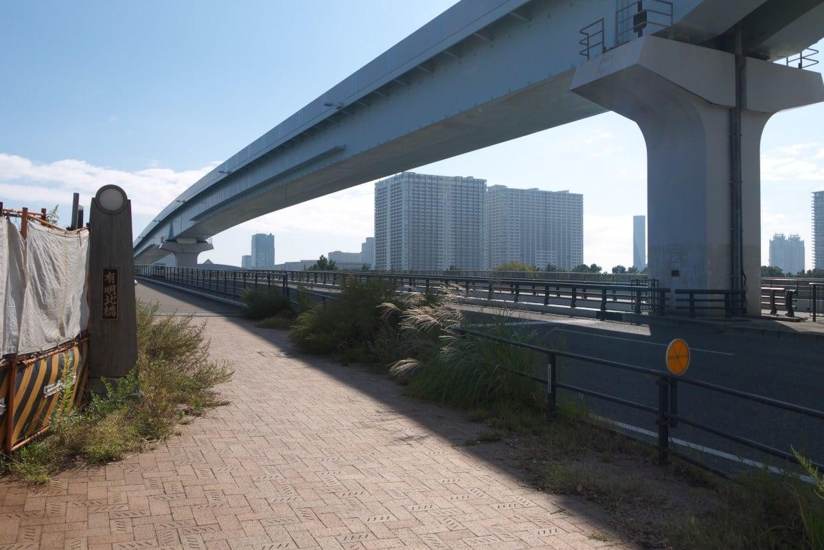 11月の豊洲新市場:有明北橋と有...