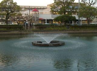 蓮池の噴水