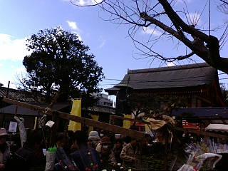 東寺、終い弘法に来ています。