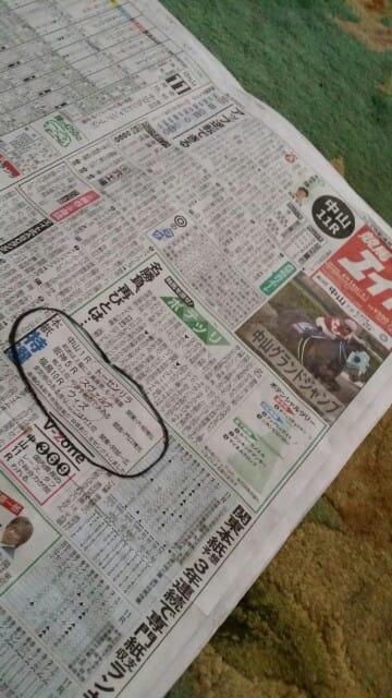 エイト 競馬 新聞
