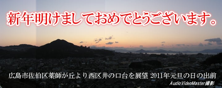 2011_1_1