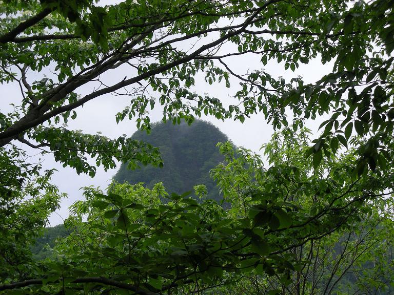 「特異な山容の角落山が見えた」