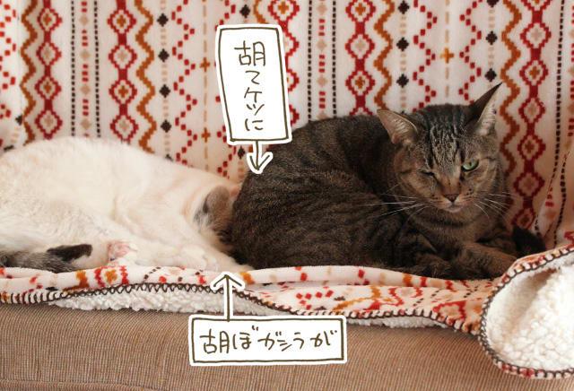 本日休業/1階組の男たち