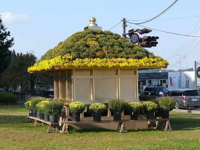 平泉町中尊寺の菊花展 - peaの植物図鑑