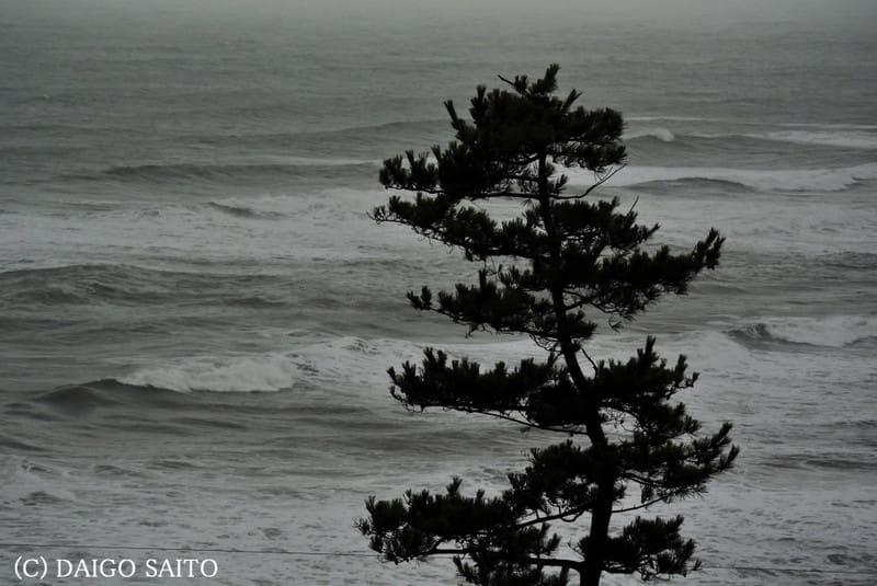 海辺の雰囲気Ⅰ