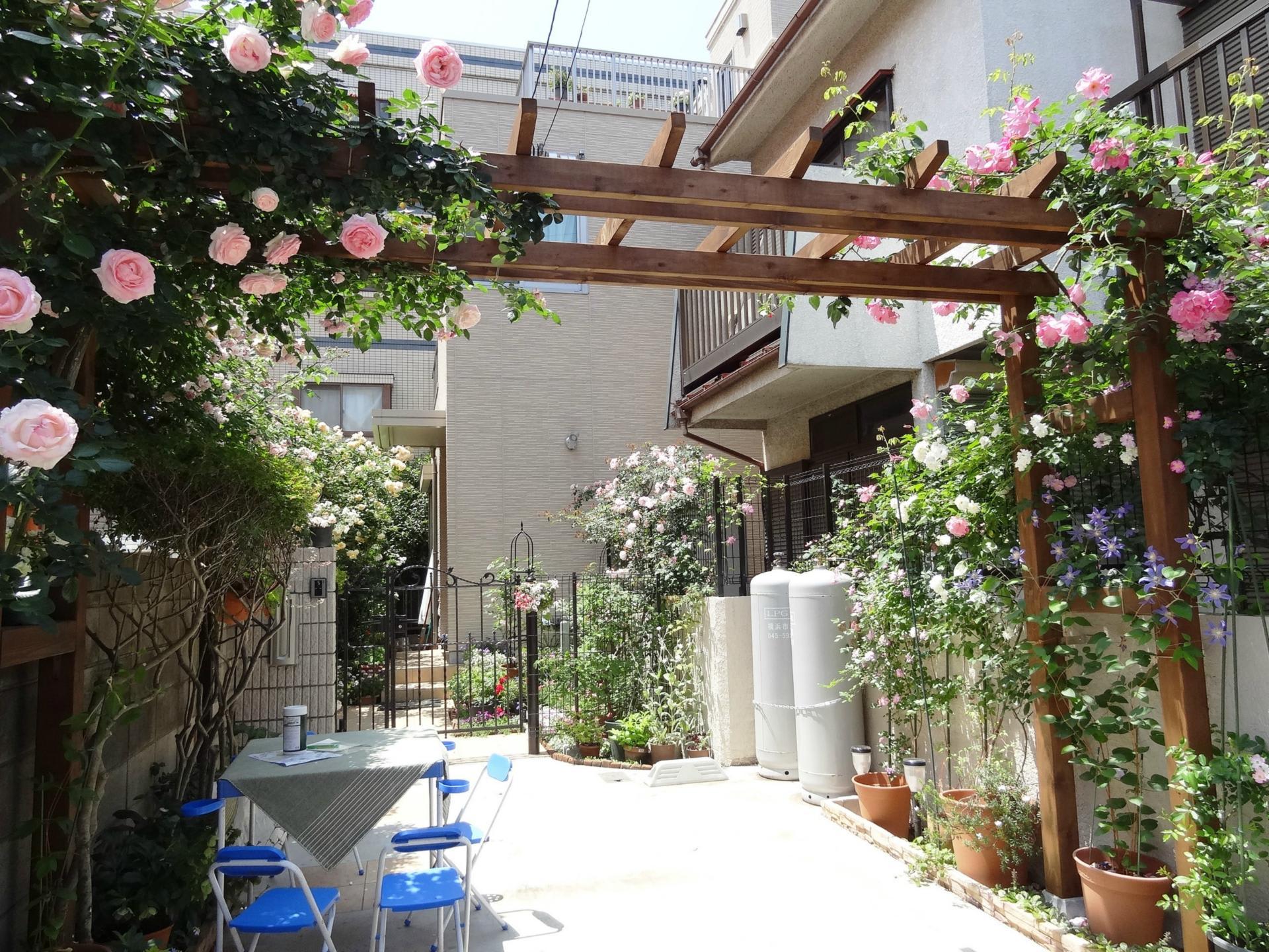 薔薇 オープンガーデン