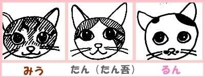 進化するらしいw猫こたつ