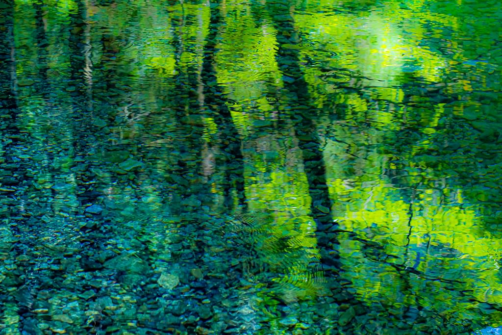 水に映る光景の写真