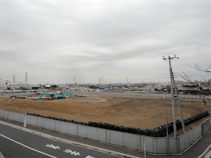 01月05日 松の木島