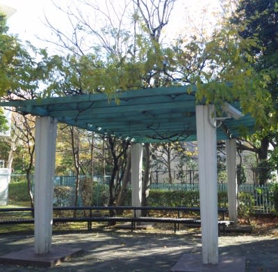 角型の藤棚