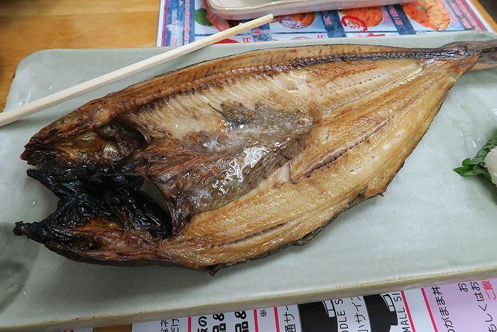 「札幌・小樽一泊旅行」 壱 - 卯月の日常