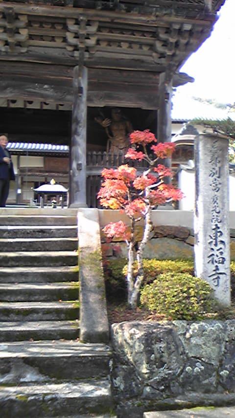 松山・徳島へ