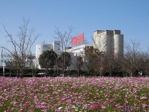 キリン ビール 工場 コスモス