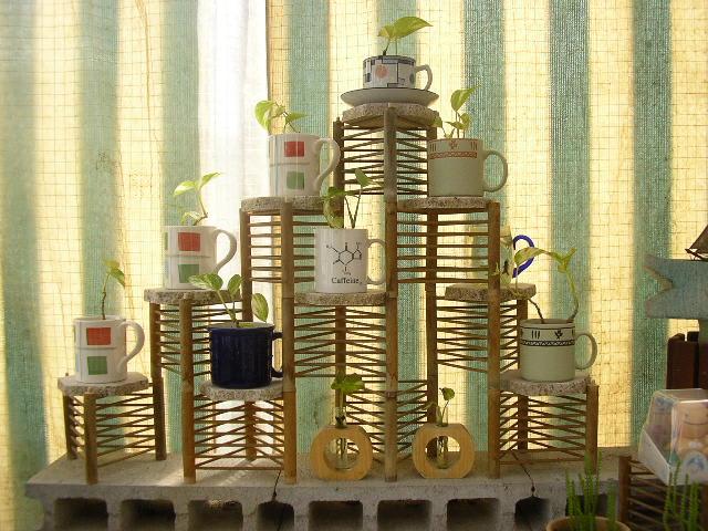 コップ鉢用棚の画像