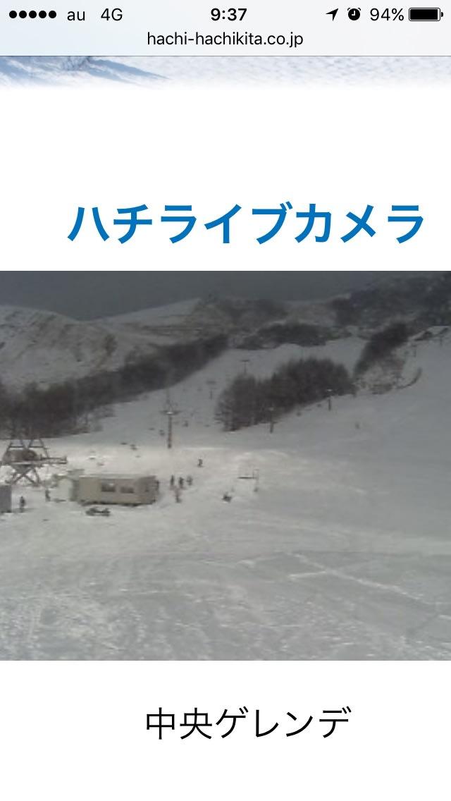 カメラ ハチ 高原 ライブ