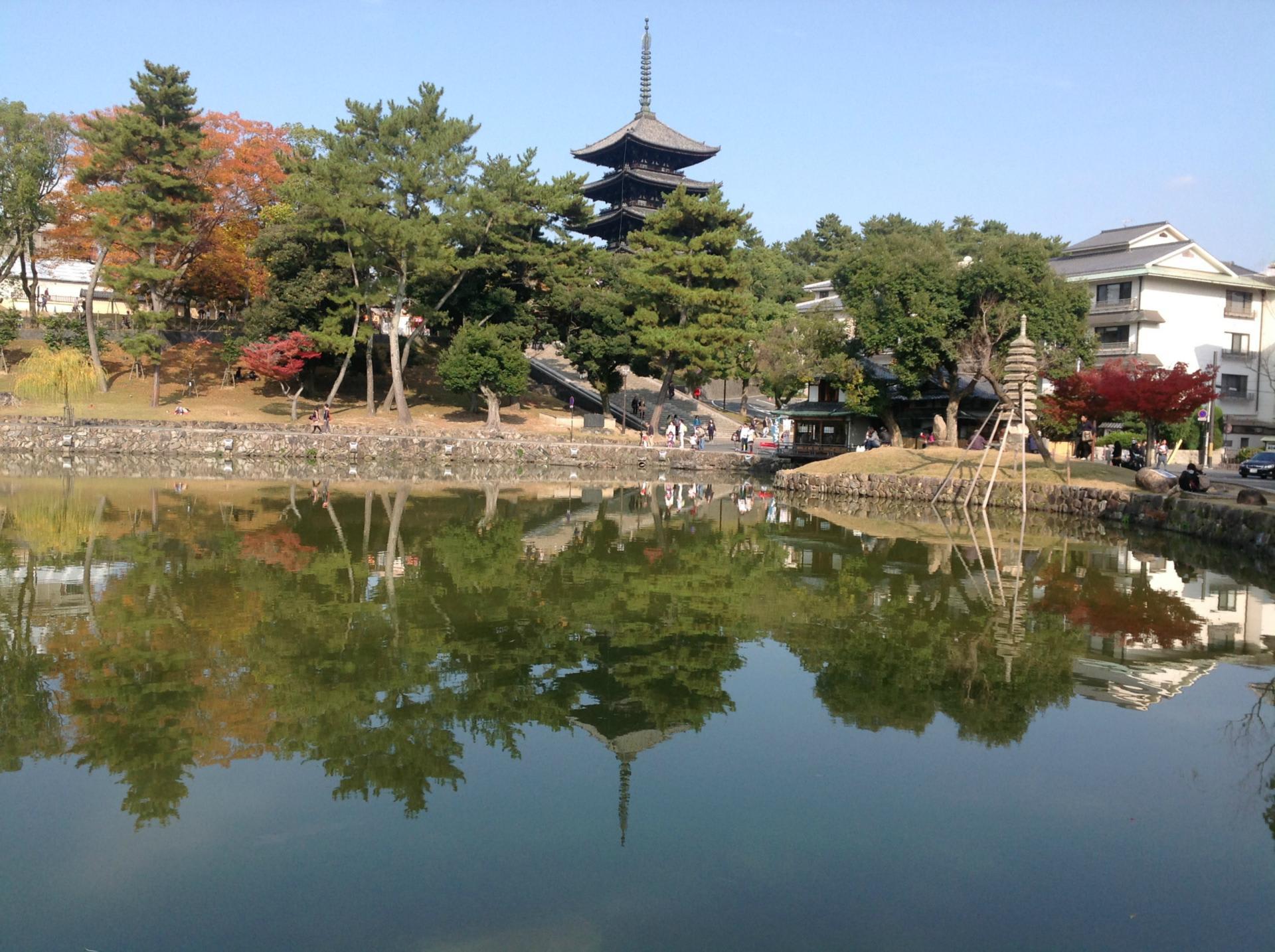 奈良市 旅行