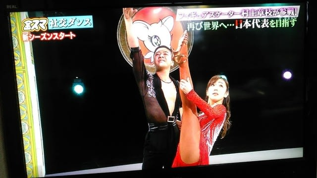村主 章枝 社交 ダンス