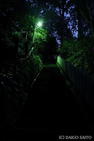 暗がり石段