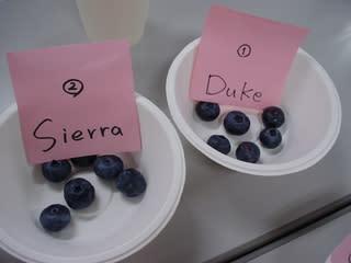 Duke(デューク)とSierra(シェラ)