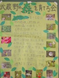 欅祭展示.JPG