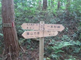 https://blogimg.goo.ne.jp/user_image/57/13/2edb4265bc703f6286fa74905a70e117.jpg
