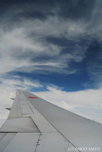 大空に映える翼