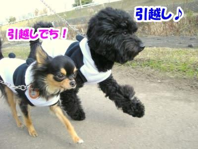 https://blogimg.goo.ne.jp/user_image/57/4a/994bcb8b25af01dc762b1c0a2d3a841d.jpg