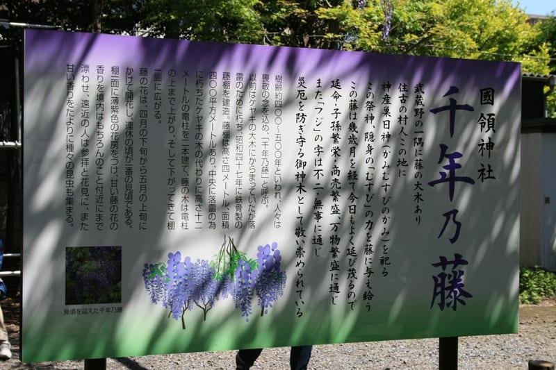 Annaiban_6739