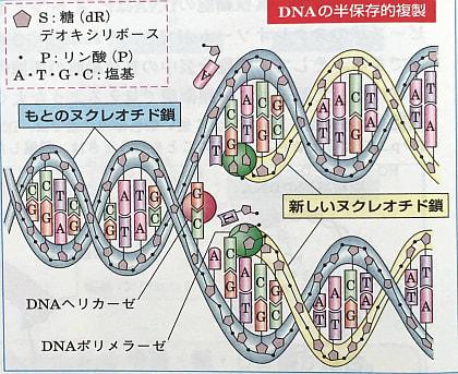多次元空間へのお誘い(14):DN...