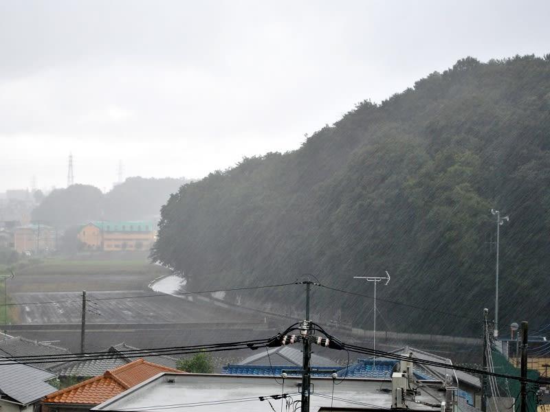 08月26日 大雨根岸台