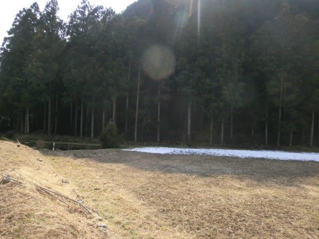 24日の残雪