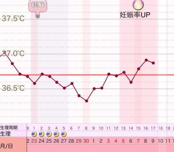 ブログ 高温期4日目 妊娠した時