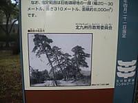 Dscn3665b