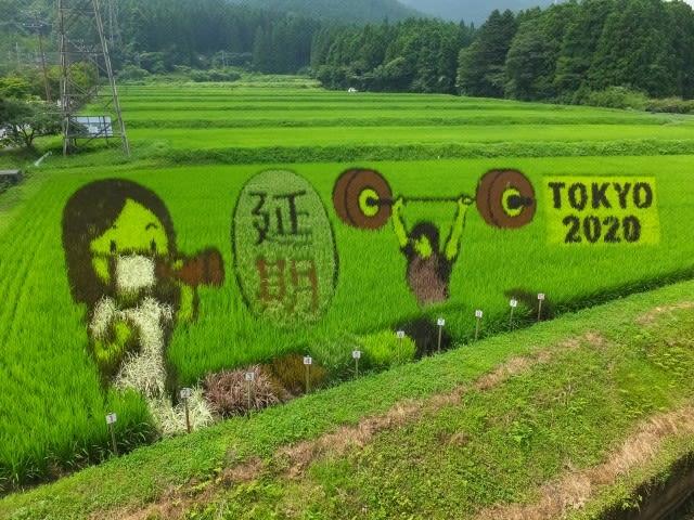 2020 田んぼ アート