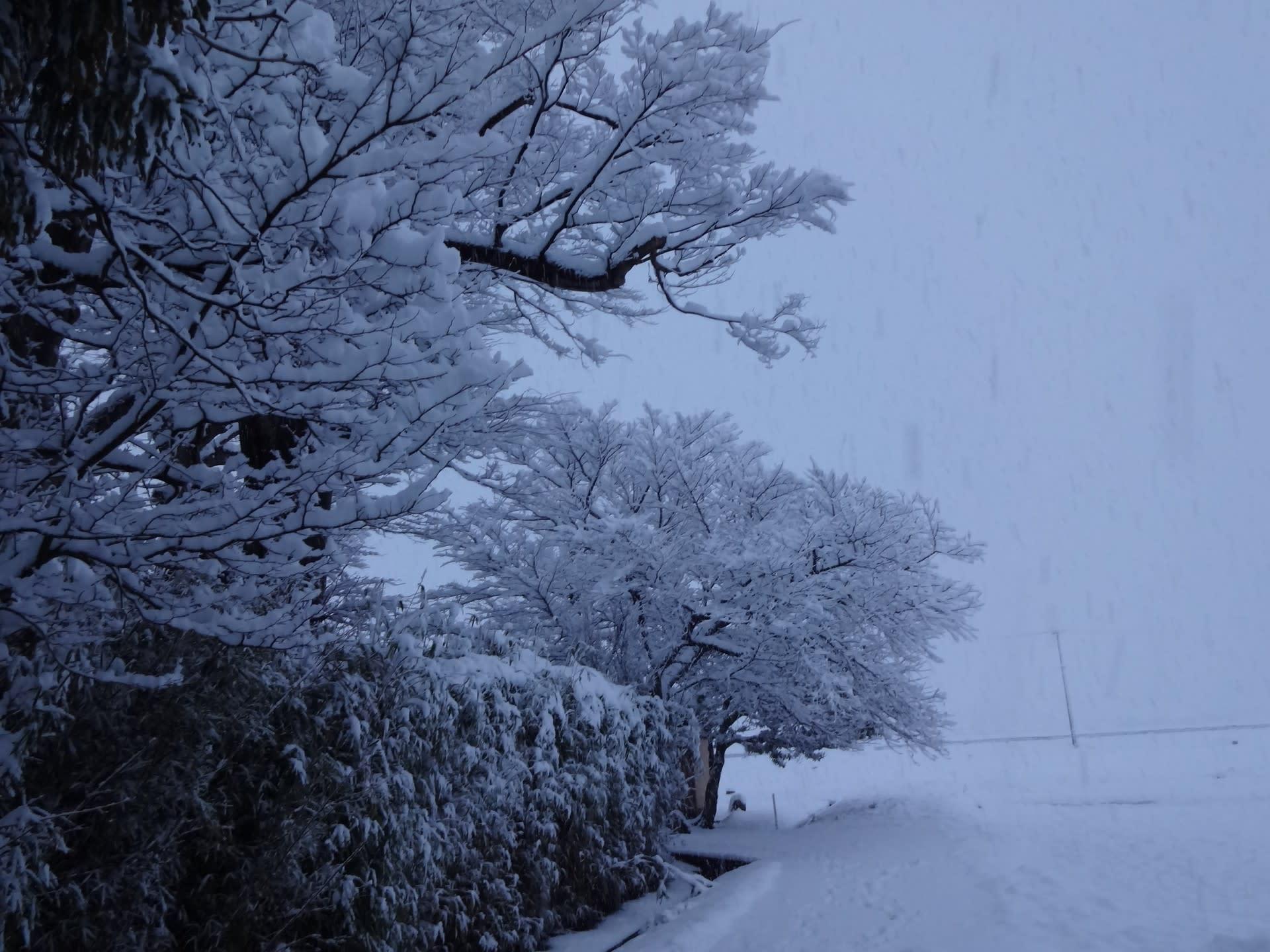 気まぐれな冬の空