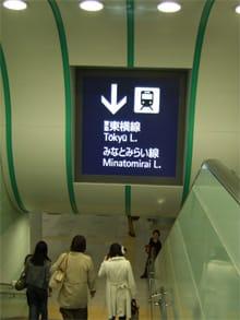 東急グリーンの階段