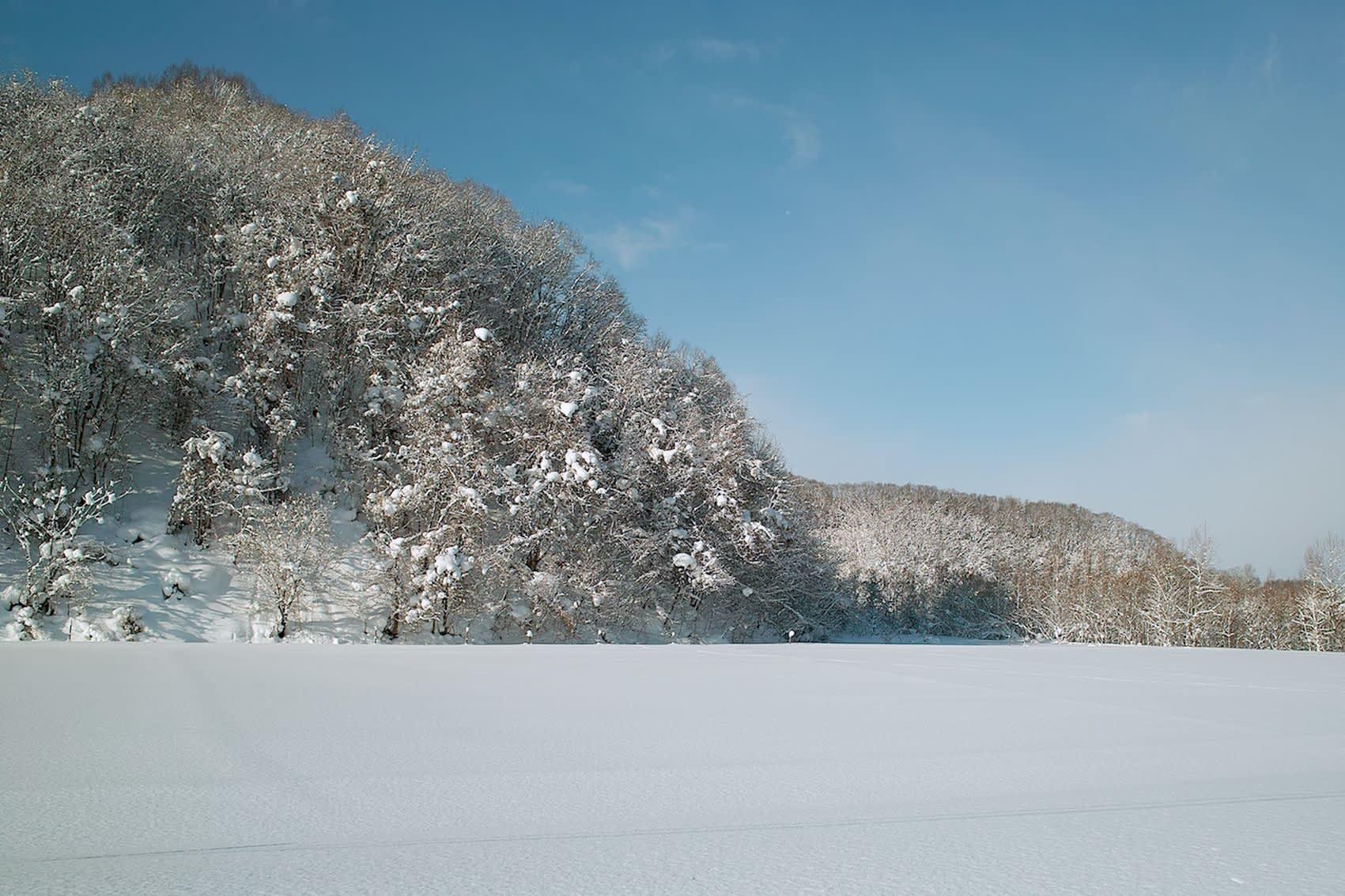 北海道道4号旭川芦別線:1月19日2019 - えぞ地(北海道)の身近な風景