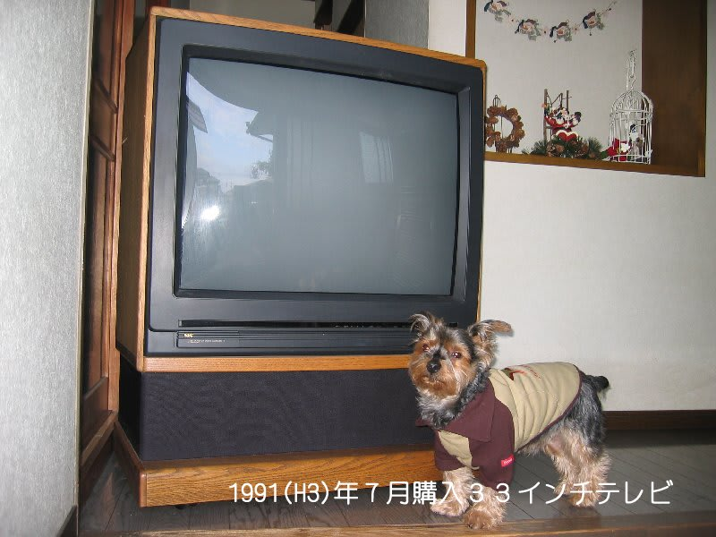 20061208_259ns