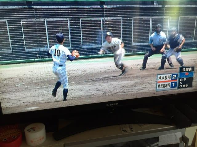 高校野球熊本大会 シード校と日程組み合わせ、 …