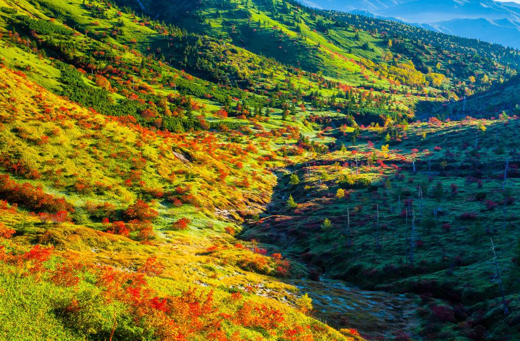 山田峠の紅葉