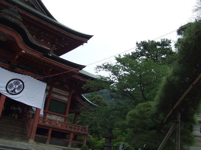 2009_05200430